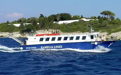 Kamelia Lines / Despina